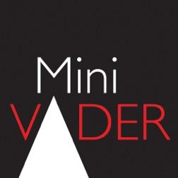 Mini VADER