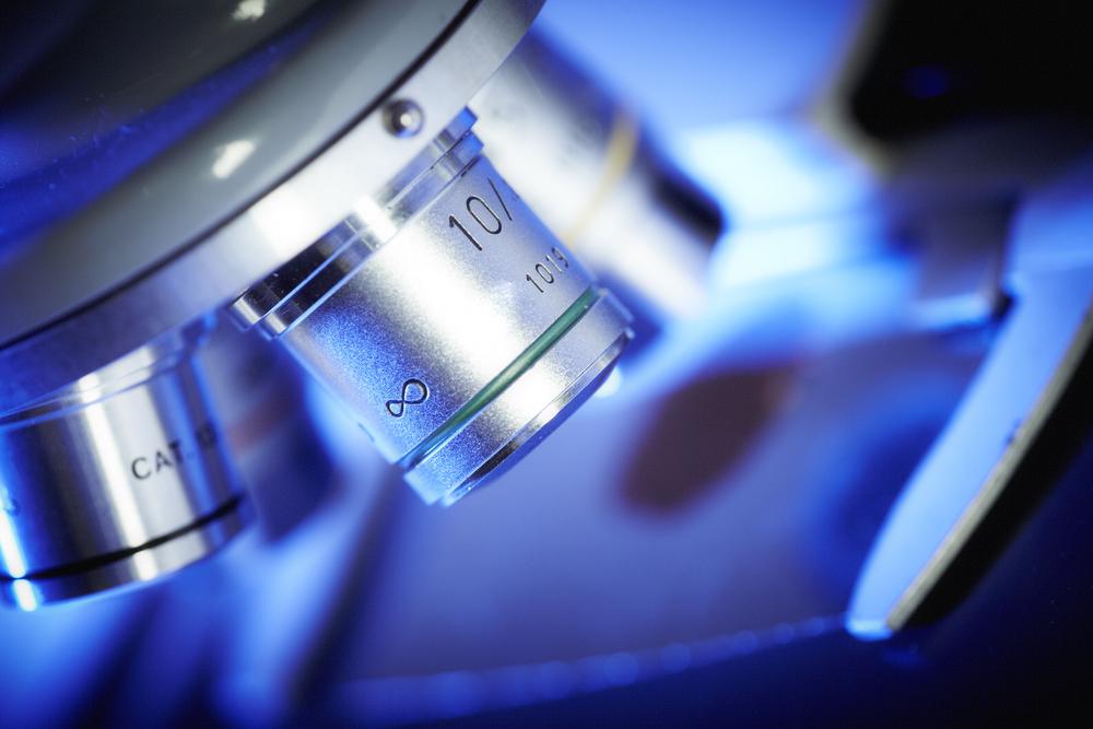 Premier Periclase Case study microscope (2)